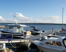 Timber pontoons with concrete floats Kaberneeme Andry Prodel +372 5304 4000 andry@topmarine.ee