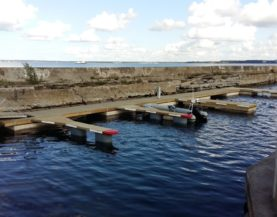 Timber pontoons with concrete floats Tallinn Andry Prodel +372 5304 4000 andry@topmarine.ee